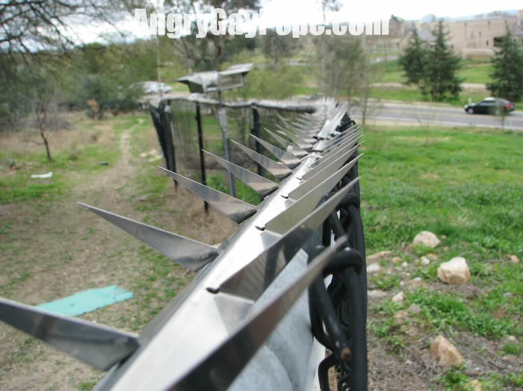 [Image: fence_blades_fgnd_focus.jpg]